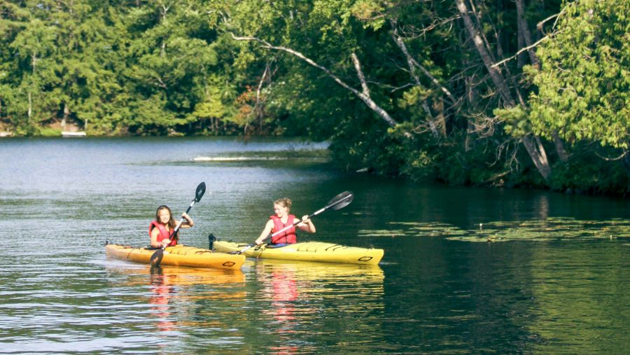 Campers kayak near tree-covered shoreline