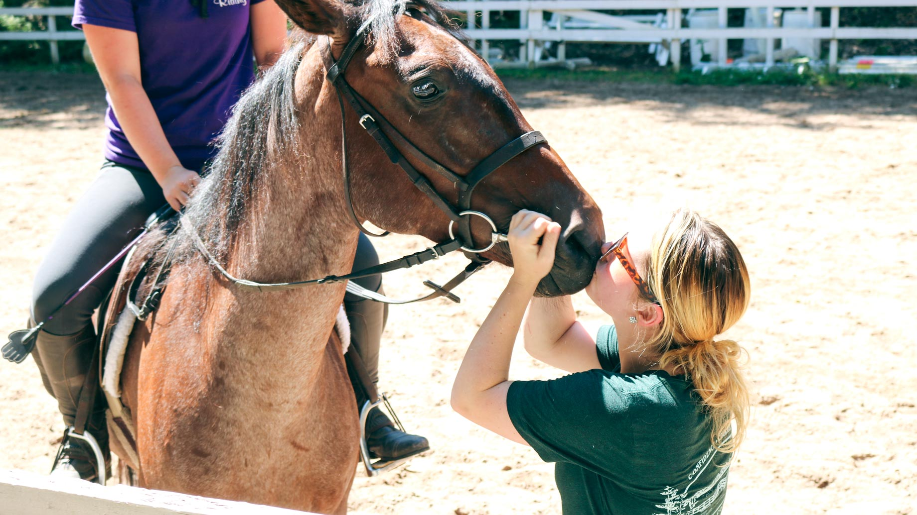 Girl kisses a horse on the nose
